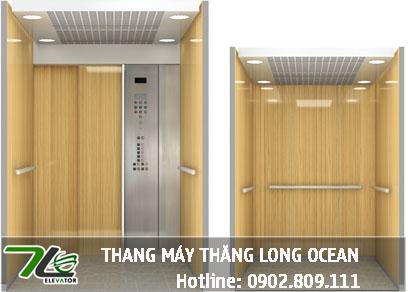TOP 20 Mẫu Cabin Thang Máy Tải Khách Hiện Đại năm 2020