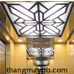 Mẫu trần thang máy PV006